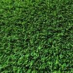 Super Lawn 60